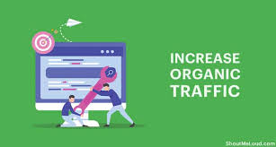 Organic Traffic: How to Increase Your Organic Traffic With SEO